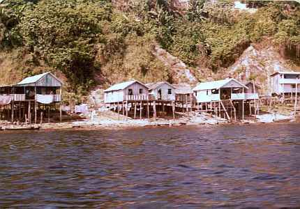 Amazon River settlement