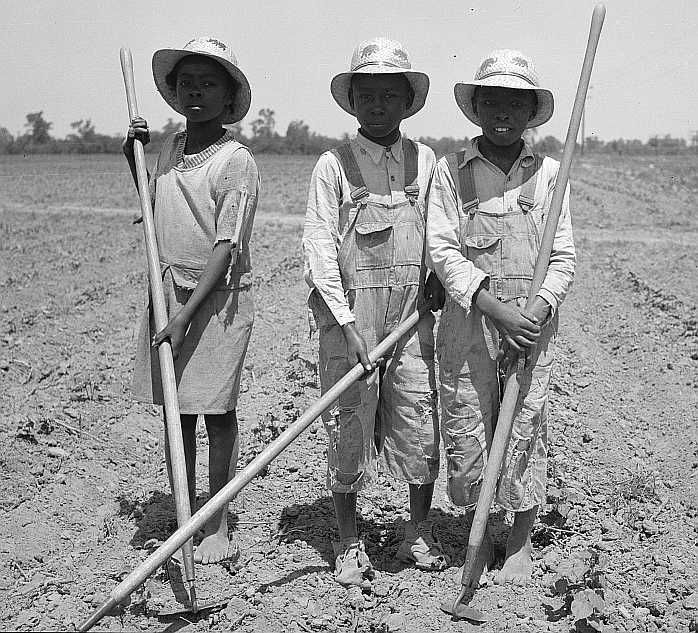 Children chopping cotton. Near Marked Tree, Arkansas. (Ages, left to right: ten years, thirteen years, eight years)  Photo: Carl Mydans