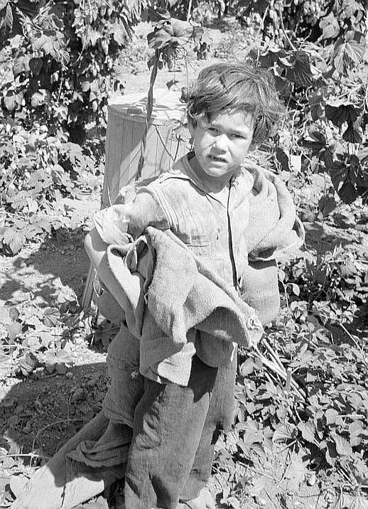 Children work in the hops in Oregon often all day and every day during the picking season. Oregon, Polk County, Independence.  Photo: Dorothea Lange