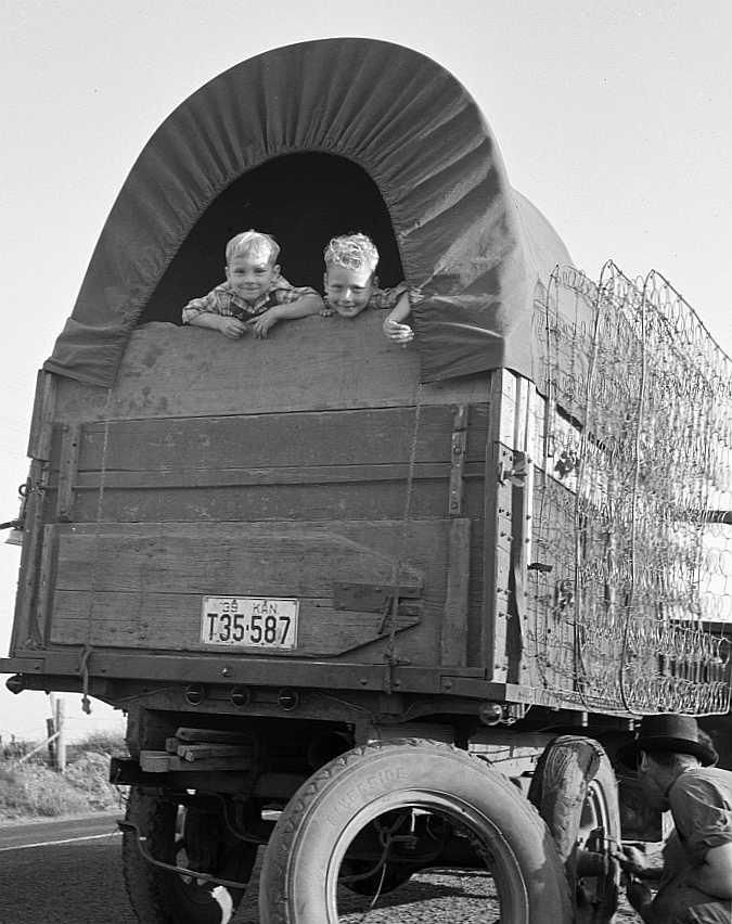 Just arrived from Kansas. On highway going to potato harvest. Near Merrill, Klamath County, Oregon  Photo: Dorothea Lange