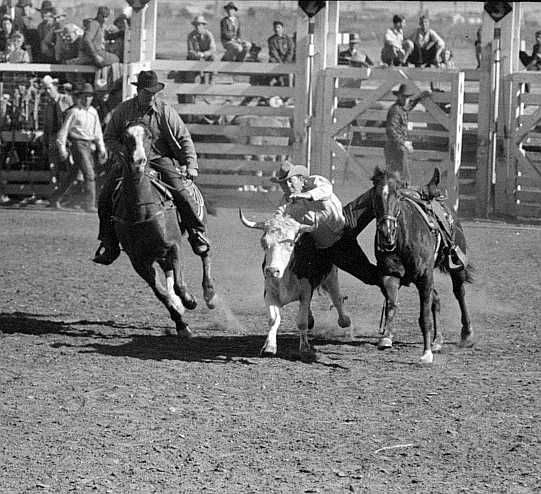 San Angelo Fat Stock Show, San Angelo, Texas Photo: Russell Lee