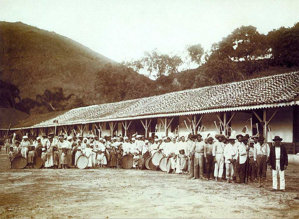 Slaves on a Brazilian coffee plantation