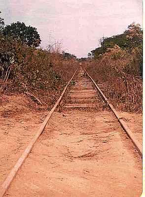 Madeira Mamore Railbed Brazil Uys